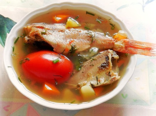 Types of Fish to Cook
